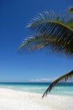 idyllisk strand Arkivfoton