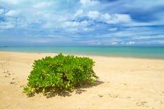 Idyllisk strand av det Andaman havet i Koh Kho Khao Royaltyfria Foton