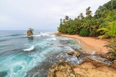 Idyllisk strand Manzanillo Costa Rica arkivfoto