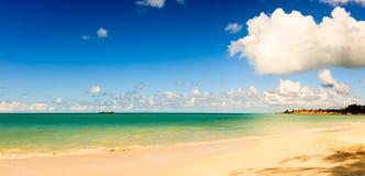 Idyllisk tropisk strand på Antiguaön i karibiskt royaltyfria bilder