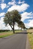 idyllisk väg för land Royaltyfri Fotografi