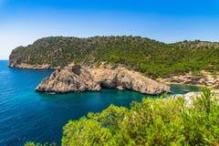Idylliskt ölandskap på Majorca Spanien arkivfoton