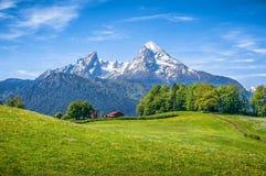 Idylliskt alpint landskap med gröna ängar, lantbrukarhem och snö-korkad bergblast royaltyfri fotografi
