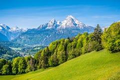Idylliskt alpint landskap med gröna ängar, lantbrukarhem och snöig bergblast arkivbild