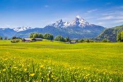 Idylliskt landskap i fjällängarna med nya gröna ängar arkivfoto