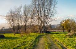 Idylliskt lantligt landskap i eftermiddagsolljuset Arkivbilder