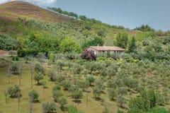 Idylliskt lantligt landskap med det hemtrevliga traditionella lantgårdhuset i italienare Abruzzo Arkivbilder