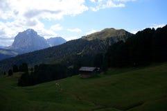Idylliskt moutainlandskap med en liten vik/gräsplanängar/maxima för mest forrest/högt berg royaltyfri foto