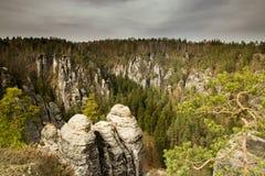 Idylliskt skoglandskap i saxonen Schweiz Arkivbilder