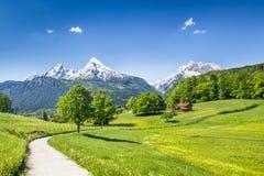 Idylliskt sommarlandskap i fjällängarna, Bayern, Tyskland arkivfoton