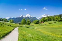 Idylliskt sommarlandskap i fjällängarna, Nationalpark Berchtesgaden, Bayern, Tyskland arkivfoton
