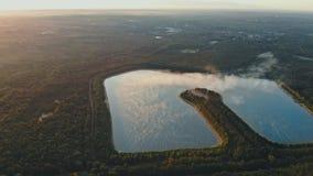 Idylliskt sommarlandskap med sjön i en skog lager videofilmer