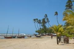idylliskt tropiskt för strand Royaltyfri Fotografi