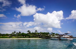Idylliskt tropiskt havs- och turkosvatten Arkivfoto