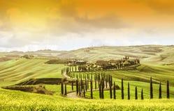 IDYLLISKT TUSCANY LANDSKAP MED CYPRESSTRÄD BÄSTA DRAGNING I ITALIEN BERÖMD TURDESTINATION arkivbilder