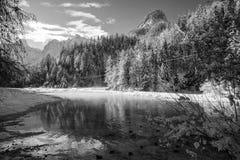 Idylliskt vinterlandskap vid floden Pisnica i Julian Alps i svartvitt, Kranjska Gora, Slovenien Arkivbild