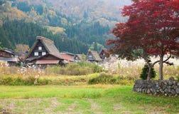 idzie Japan shirakawa tradycyjna wioska Obraz Stock