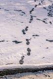 idzie posiadać sposób twój odcisk stopy czasu zimy śniegu Zdjęcie Stock