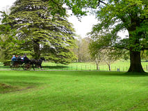 ierland Killarney nationaal park Royalty-vrije Stock Fotografie