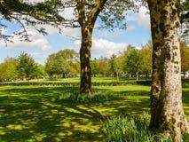 ierland Killarney nationaal park Stock Afbeeldingen