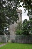 Ierland, Nenagh-Kasteel stock fotografie