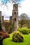 Iers kasteel van Blarney, beroemd voor de steen van welsprekendheid. Ire stock afbeelding
