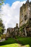 Iers kasteel van Blarney, beroemd voor de steen van welsprekendheid. Ire royalty-vrije stock afbeeldingen