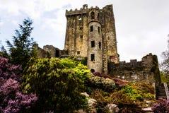 Iers kasteel van Blarney, beroemd voor de steen van welsprekendheid. Ire royalty-vrije stock foto's