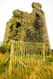 Iers landschap Ruïnes van kasteel, Cork van de Provincie, Ierland Europa Stock Foto's