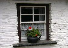 Iers plattelandshuisjevenster Royalty-vrije Stock Afbeeldingen