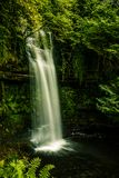 Iers Watervalportret Stock Foto