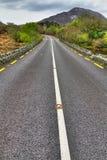 Ierse weg bij bergen royalty-vrije stock afbeelding