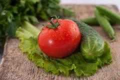 Iets groenten Royalty-vrije Stock Foto