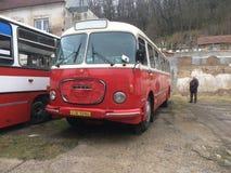 Iets van bus Royalty-vrije Stock Foto's