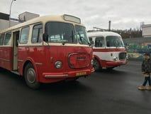 Iets van bus en één speciale auto Royalty-vrije Stock Afbeeldingen