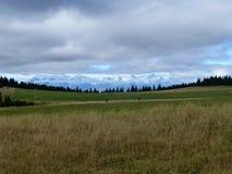 Iew der hohen schneebedeckten Spitzen Tatras von der Wiese in niedrigem Tatra stockbild