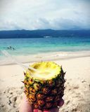 If You like Pina coladas.. Royalty Free Stock Images