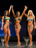 2014 IFBB Toronto Pro Supershow Royalty Free Stock Photos