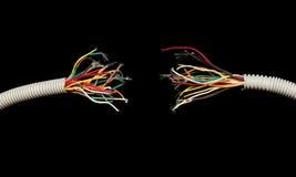 ifrån varandra black isolerade rivna trådar Royaltyfri Foto