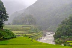 Ifugao da província da montanha Fotos de Stock Royalty Free