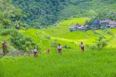 Ifugao-ethnische Minderheit in den Philippinen lizenzfreies stockbild