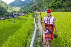 Ifugao-ethnische Minderheit in den Philippinen lizenzfreie stockfotografie