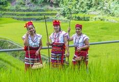 Ifugao etnisk minoritet i Filippinerna arkivbild