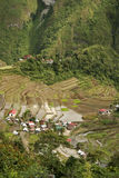 Ifugao rice terraces batad philippines. World heritage ifugao rice terraces on steep mountain sides of batad northern luzon the philippines Royalty Free Stock Photo