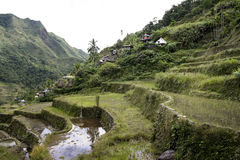 Ifugao rice terraces batad philippines Royalty Free Stock Photography