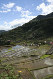 Ifugao rice terraces batad philippines Stock Photography