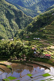 Ifugao village rice terraces philippines Stock Photos