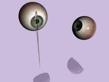 igła oko Zdjęcie Stock