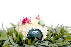 Igelblume im Grün verlässt mit Beeren auf lokalisiertem weißem b Lizenzfreies Stockbild