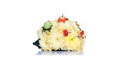Igeles von Blumen auf einem lokalisierten weißen Hintergrund Stockbilder